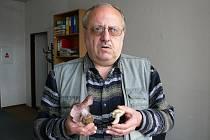 Vamberský mykolog Václav Matějka ukazuje nalezené houby.