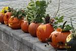 Podzim patří dýním. Děti tvořily, dospělí ochutnávali.
