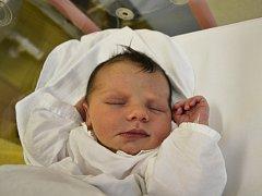 ELLA HRABEC svým příchodem na svět potěšila maminku Martinu a tatínka Pavla Hrabcovi z Náchoda. Holčička se narodila 12. března ve 13:41 s váhou 3720 gramů a délkou 50 cm. Tatínek měl prý obavy, ale porod zvládl na jedničku. Mamince moc pomohl.