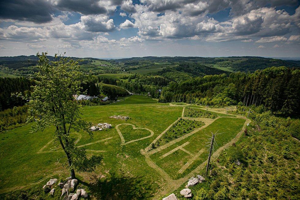 Na Feistově kopci u Olešnice v Orlických horách.