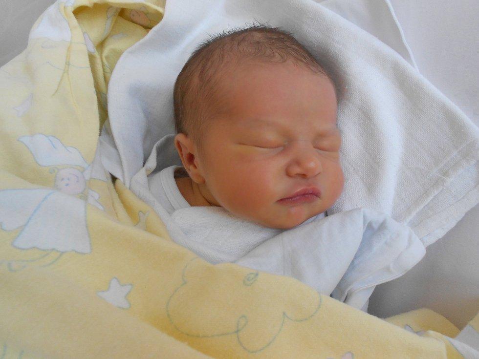 ELIZABETH poprvé vykoukla na svět 28. května ve 13.14 hodin. Měřila 50 cm a vážila 3082 g. Největší radost udělala svým rodičům Nicole Čočové a Petru Jánskému z Kostelce nad Orlicí. Tatínek to u porodu zvládl perfektně.