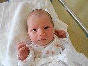 Josef Svoboda se narodil 29. listopadu 2018 v 8.28 hodin Barboře a Josefovi Svobodovým z Vamberka. Vážil 3 300 g a měřil 50 cm. Velkou radost z něj má i sestřička Magdaléna. Tatínek to u porodu podle maminky zvládl na jedničku s hvězdičkou.
