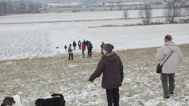 """Novoroční procházka nazvaná """"Novoroční detoxikační procházka"""" v Mokrém."""