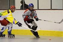 týniště-rokytnice_inline hokej