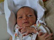 ULRIKA ADA BAYLARZADA svým příchodem na svět potěšila rodiče Ayshan a Novruz Baylarzadovi z Kostelce nad Orlicí. Holčička se narodila 5. května v 8:58 s váhou 2500 gramů a délkou 51 cm.