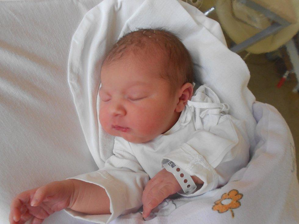 Laura Kamšová přišla na svět 14. května 2019 v 17.25 hodin rodičům Andree Čepelkové a Martinu Kamšovi z Týniště nad Orlicí. Holčička vážila 3 490 g a měřila 50 cm. Tatínek byl podle maminky největší oporou.