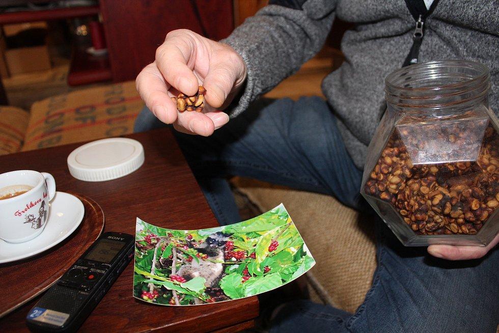 Navštívit Frolíkovu pražírnu kávy v Borohrádku je zážitek. Petr Frolík ukazuje cibetkovou kávu.