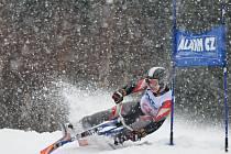 ZKUŠENÝ REPREZENTANT Aleš Housa z TJ Sokol Jablonec nad Jizerou vyhrál v Deštném v Orlických horách jak mistrovský slalom, tak další dva závody Českého poháru.