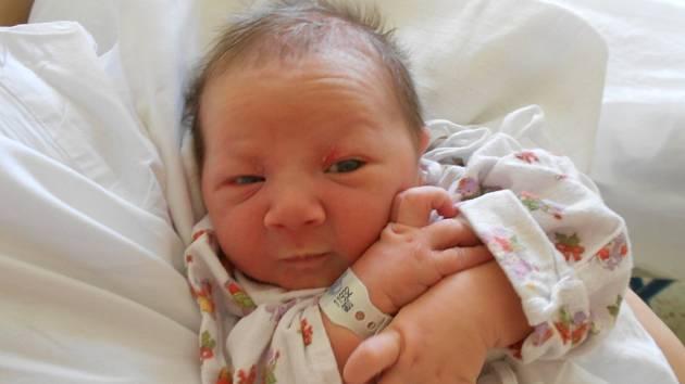 Alexandr Synek s váhou 3 810 g přišel na svět 25. března 2019 ve 13.12 hodin rodičům Michaele a Petru Synkovým z Lázní Bohdaneč. Tatínek to u porodu zvládl dle slov maminky výborně.