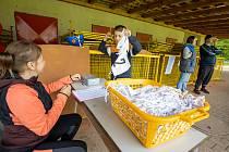 Sobotní odpoledne patřilo v Kostelci nad Orlicí sportu. DDM přichystal pro děti klání o Kosteleckého gladiátora