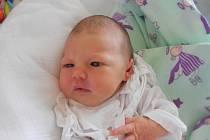Tereza Jarkovská se narodila 20. července ve 12.48 hodin. Vážila 2,7 kilogramů a měřila 46 centimetrů. S rodiči Markétou a Tomášem bude vyrůstat v Dobrušce.