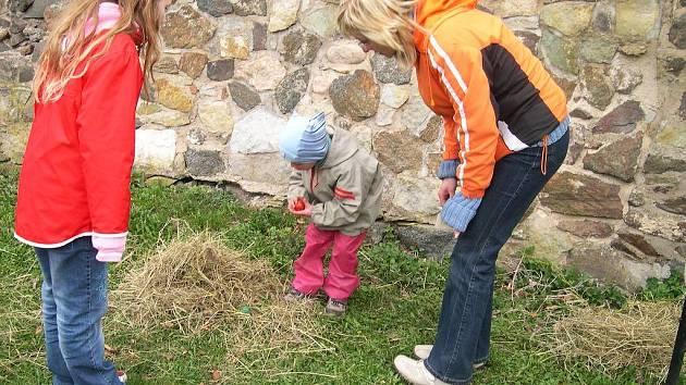 Hledání vajíček na potštejnském hradě