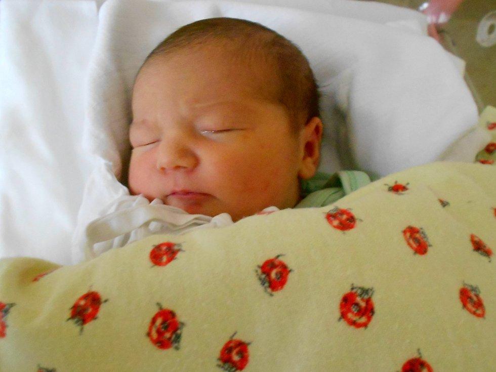 Eliška Syrovátková přišla na svět 31.12. 2020 v23.14 hodin. Měřila 49 cm a vážila 3 530 g. Těšili se na ni rodiče Jana Horčičková a Milan Syrovátko zVelké Čermné. Tatínek to u porodu zvládl perfektně.