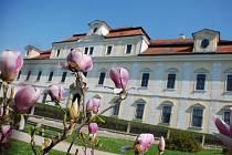 Květiny na zámku