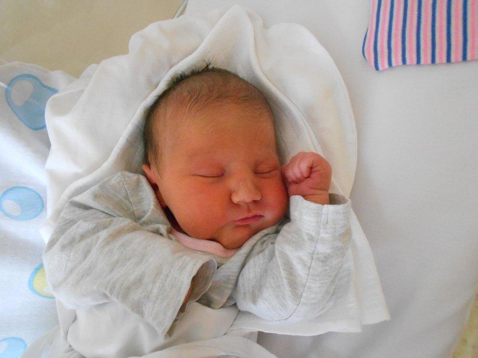 DOMINIKA KOUDELKOVÁ přišla na svět 31. května ve 13.52 hodin. Měřila 50 cm a vážila 3120 g. Radost udělala svým rodičům Lucii Michlové a Jaroslavu Koudelkovi z Opočna. Tatínek to u porodu zvládl skvěle a byl mamince velkou oporou.