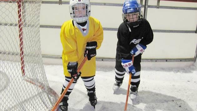 ONDRA A MICHAL, je jim teprve sedm let, přesto už jsou plně zapálení do hokeje. Výzbroj jim velmi sluší.