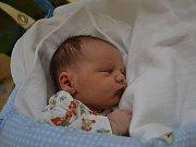 MAXMILIÁN ROUS:  Rodiče Lucie a Josef Rousovi ze Záchlumí přivítali na svět prvního potomka. Chlapeček se narodil 25. dubna ve 13:14 s váhou 2920 gramů a délkou 48 cm. Tatínek byl u porodu a zvládl ho skvěle.