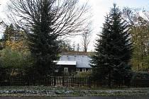 Sníh na Rychnovsku