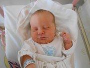 ELIŠKA CHALOUPKOVÁ se narodila manželům Michaele a Zdeňkovi Chaloupkovým z Týniště nad Orlicí 12. prosince 2018 v 9.46 hodin s váhou 3 220 g a délkou 50 cm.
