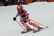 Lucie Rydlová se řítí do branky obřího slalomu.