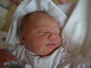 VERONIKA KOVÁŘOVÁ se narodila 25. června  v 15:09 mamince Štěpánce a tatínkovi Petrovi Kovářovým z Hradce Králové. Holčička vážila 3520 gramů a měřila 47 cm. Tatínek byl u porodu mamince oporou. Doma se na sestřičku těšil starší bráška Jakub.
