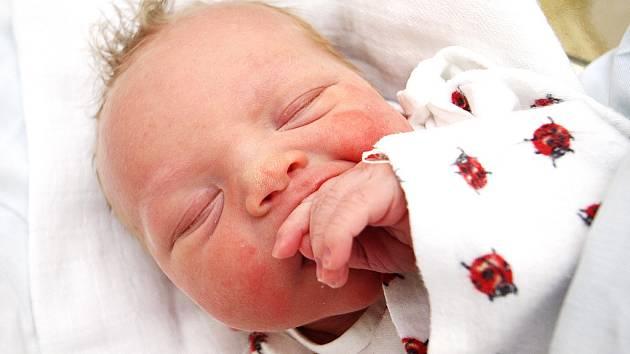 ZDENĚK: Jiřina Poláková a Zdeněk Pecka z Borohrádku přivítali do své rodiny druhého potomka. Malý Zdeněček se narodil 15. ledna 2009 ve 21.39 hodin s váhou 3,44 kg a mírou 48 cm. Rodiče dopředu věděli o pohlaví svého dítěte.
