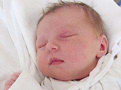 DOROTA NOVOTNÁ: Manželé Kateřina a Martin Novotní z Dolska přivedli na svět dceru. Narodila se 13. května v 9.17 hodin s váhou 3,9 kg a délkou 53 cm. Doma se těší bráška Toníček. Tatínek byl u porodu statečný.
