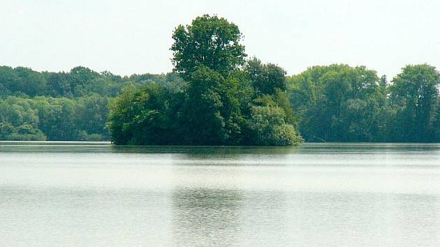 Turisté se vydali k rybníku Broumar za kosatci