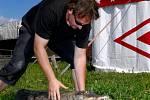 Jedinečná show cirkusu: drezura krokodýlů
