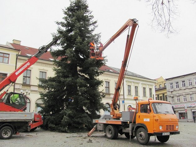 Vánoční strom už stojí na Starém náměstí.
