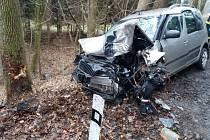 Po nárazu do stromu zůstal v autě těžce zraněný řidič.