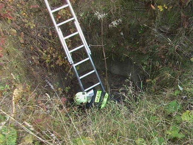 Ve čtyři metry hluboké vyschlé studni uvázl pes. Museli ho vyprostit hasiči.