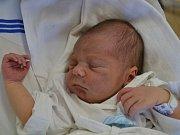 DAVID  se narodil 16. května v 18:16 mamince Dagmar Faltusové a tatínkovi Davidovi Morongovi z Rychnova nad Kněžnou. Chlapeček vážil 3100 gramů a měřil 49 cm. Tatínek porod zvládl na jedničku.