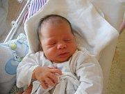 Viktorie ŠTĚPOVÁ přišla na svět 2. listopadu 2018 ve 20.19 hodin s váhou 3 550 g a délkou 50 cm. Radost z ní mají rodiče Adéla a Stanislav Štěpovi z Deštného v Orlických horách i bráška Samuel. Tatínek to zvládl u porodu dobře.