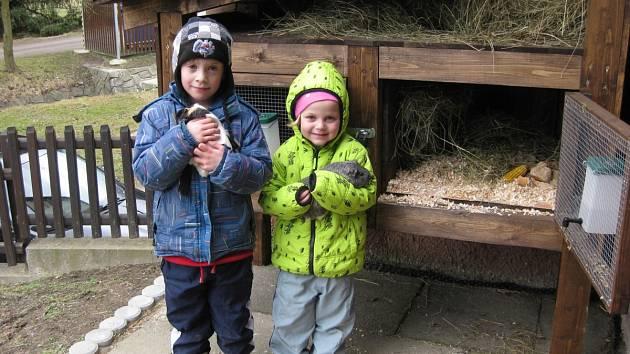 DĚTI VE ŠKOLCE mají vlastní králíkárnu (na snímku vlevo), v ní chovají dvě morčátka. Do budoucna tu přibudou také králíci.