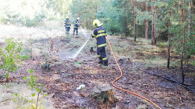 Vzplanutí trávy uprostřed lesa v Rašovicích.