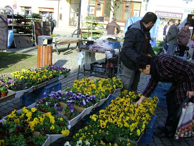Blížící se první jarní den předznamenala barevná květinová krása, které vládla zelená.