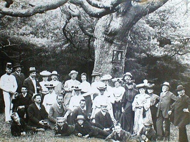 Stovky let stará borovice neustála nájezd vandalů