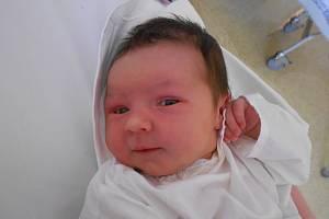Nela Plchová se narodila 1. srpna v 10.38 hodin s mírou 50 cm a váhou 3,65 kg. Z narození dcerky se radují Věra Algerová a Michal Plch z Borovnice.