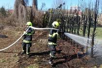 Požár tújí na zahradě rodinného domu v ulici V Sítinách v Týništi nad Orlicí.