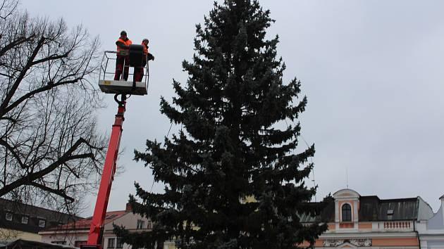 Vánoční strom zdobí další náměstí.