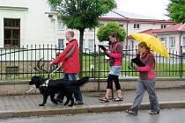 Při dobrušské soutěži podeváté změřili síly nevidomí a jejich vodící psi z celé republiky