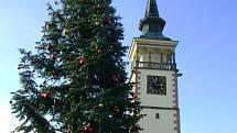 """Vánoční strom v Dobrušce se """"oblékl"""" do svátečního."""