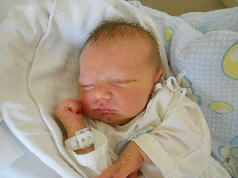 Adam Urbánek se narodil 7. června 2019 v 10.13 hodin s váhou 3 160 g a délkou 50 cm. Radost udělal rodičům Iloně Krásné a Pavlu Urbánkovi z Rychnova nad Kněžnou. Tatínek byl u porodu a zvládl to úplně skvěle. Byl nejlepší.