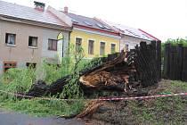 Bouřka rozlomila v Rychnově vrbu