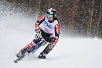 CELKOVĚ DRUHÁ skončila v konečném pořadí Světového poháru dobrušská skibobistka Stanislava Preclíková.