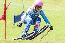 Světový i český pohár jsou jistě důležité soutěže, nicméně travní lyžaři vyhlížejí zejména září a mistrovství světa.