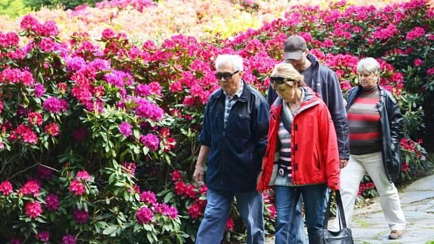 SVÁTEK kvetoucích rododendronů si v sobotu ve Svitavách nenechaly ujít stovky lidí. Návštěvníci fandili také favoritům Voříškijády. Při přehlídce se bylo na co dívat. Nejsympatičtější psi získali mimo jiné i pořádný věnec z buřtů.