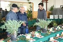 PETR ZEHNÁLEK (vpravo) z Mykologického klubu Litomyšl odpovídal na zvídavé otázky návštěvníků sobotní výstavy hub na Veselce v Litomyšli.