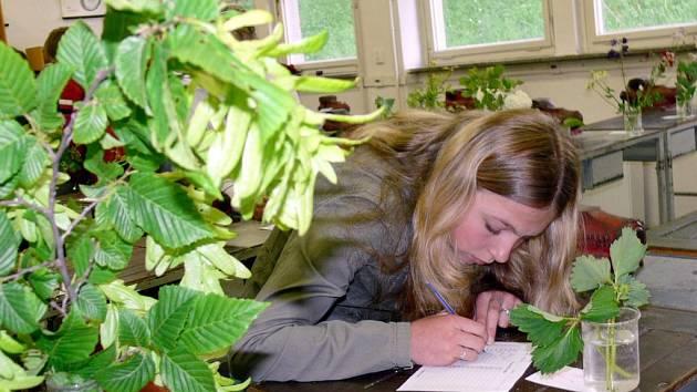 Školáci ze svitavského okresu ve středu poznávali zahradní a polní rostliny.